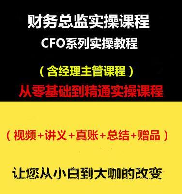 【财务总监训练营】04.管理者必备六大财务视野(4讲全)